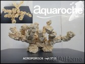 Set 60x35x35 cm Acroporock