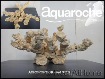 Set 60x35x35 cm Acroporock 9710