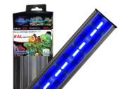 Bleu LED 6W/40cm LUMIVIE