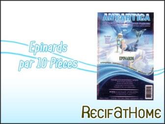 Epinard Antartica 100g