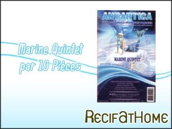 Marine quintet Antartica 100g