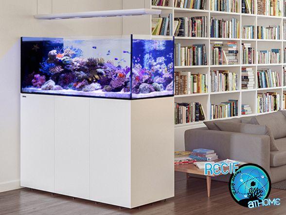 Peninsula aquarium redsea vpc recifathome for Aquarium vpc