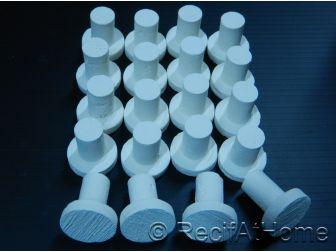 Céramique X 20 plots FRAG boutures coraux