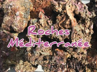 BOX Méditerranée pierres vivantes premium 30kg environ sans cites