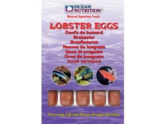 OC - OEUFS DE HOMARD 100GRS Ocean nutrition