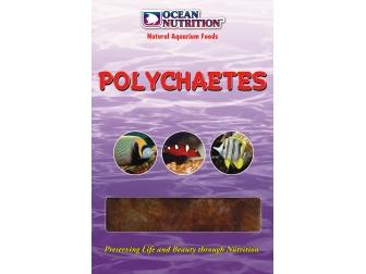 OC - POLYCHAETES (VERS DE MER) 100GR Ocean nutrition