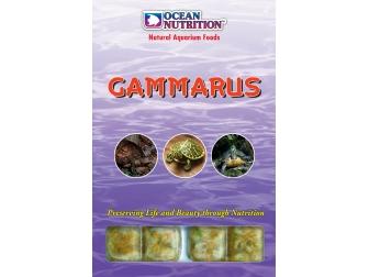 OC - GAMMARUS 100GRS Ocean nutrition