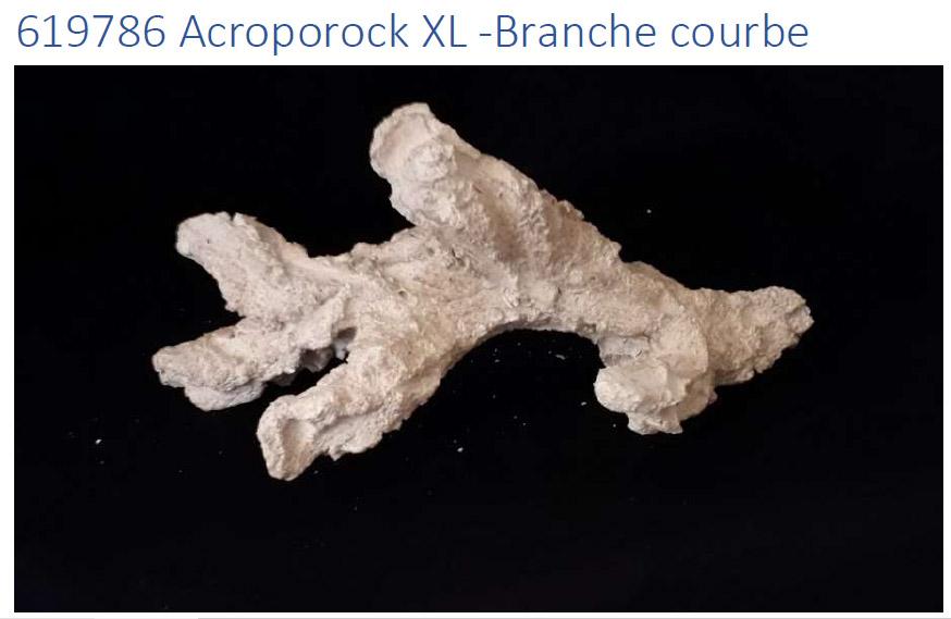 Acroporock XL Branche courbe 35 38 cm 619786