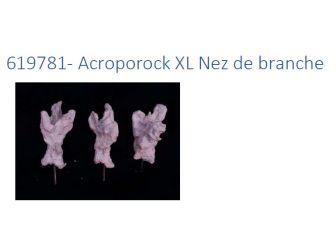 Acroporock XL Nez de branche 619781