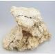 Eco reef plates au détail le kg Aquaroches