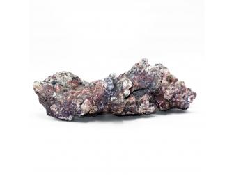 Dutch Reef Rock 8 Base 31 x 19 x 10 cm 1,6 Kg