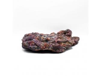 Dutch Reef Rock 37 Plate 41 x 28 x 10 cm  3,3 Kg