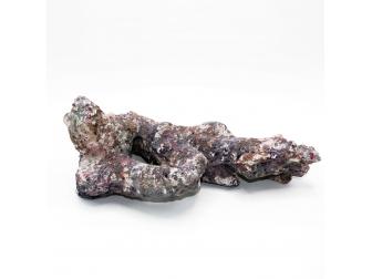 Dutch Reef Rock 50 Bones 32 x 23 x 14 cm 1,8 Kg