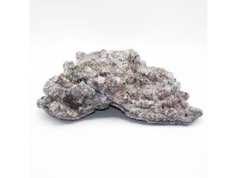 Dutch Reef Rock 56 Plate 41 x 31 x 11 cm 4,1 Kg