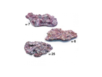Dutch Reef Rock Pack Plates Plate  6,5 Kg