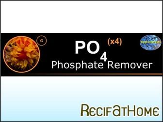 PO4x4 Phosphate remover 250ml