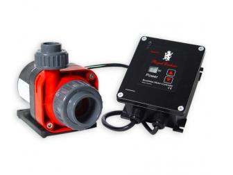 Red Dragon® 3 Mini Speedy 60 Watt - 5,5m³ - 10V connection 230 V - 50 Hz