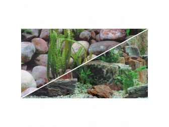 Poster Roches 1 / 2, 60 cm, 25 m, double face HOBBY