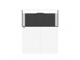 REEF 130.4 / Blanc Waterbox