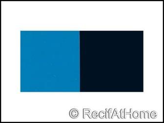 Poster bleu/noir. rouleau de 25 mètres ht 30cm