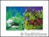 Poster Plantes 1 / 5, 30 cm, 25 m, double face